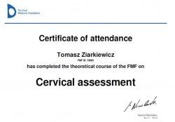 fmf-szyjka